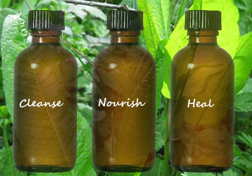 Medical Herbalist tradition: Cleanse, nourish and heal