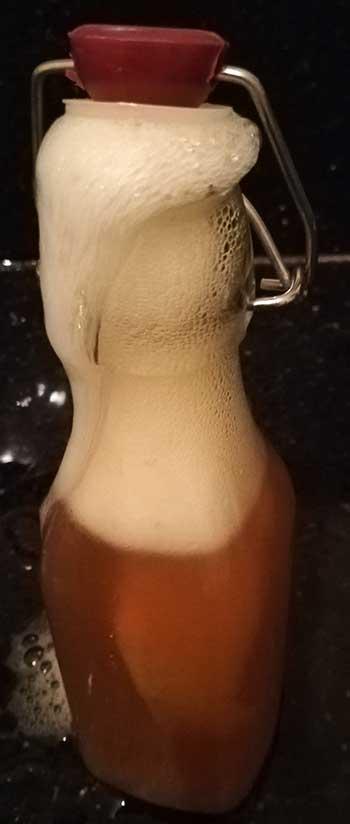 fizzy water kefir