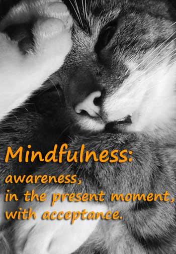 mindfulness: acceptance