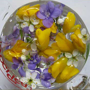 Long cold water herbal infusions