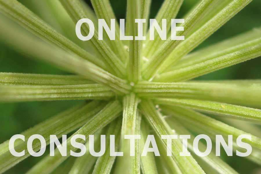 Book an online consultation