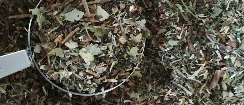 herbal medicine infusion