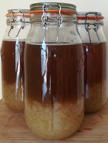 soaking water kefir grains